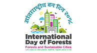internationalDayOfForest
